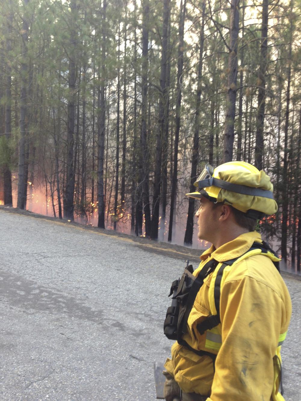 Firefighter at Forest Fire