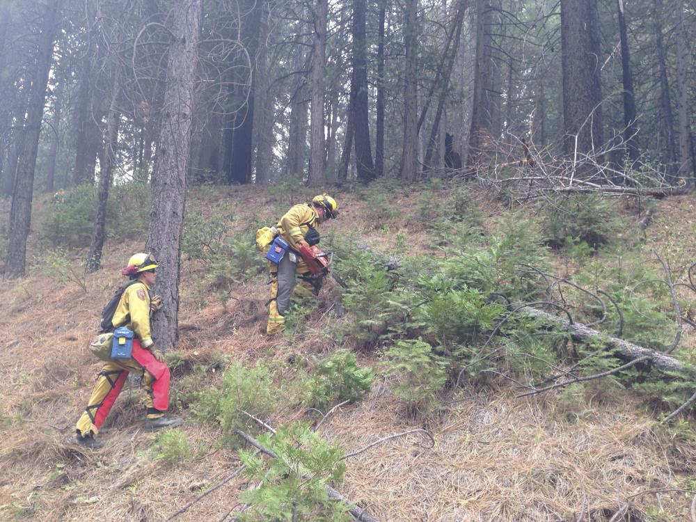 Firefighters climbing hill