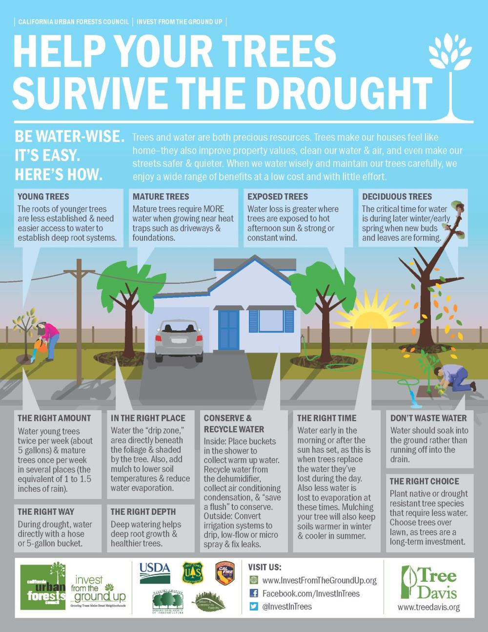 Tree-Davis-Drought-Infographic