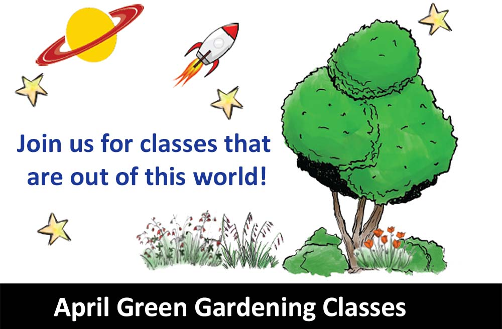 Green Gardening Classes rotate image WATER