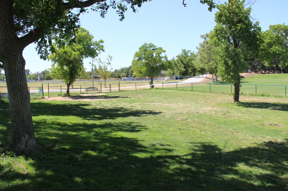 Community Park - Off Leash Dog Exercise Area(1)