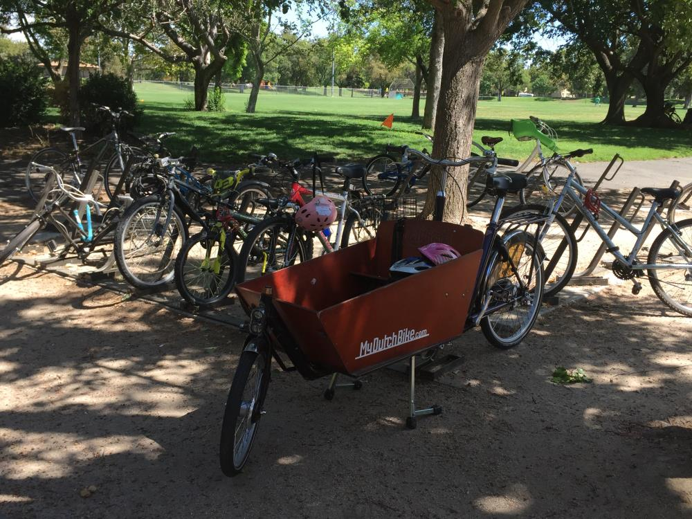 Bikes parked at library