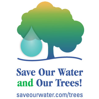 save our water & our trees