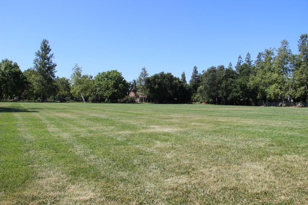 Walnut Park - South Soccer Field(3)