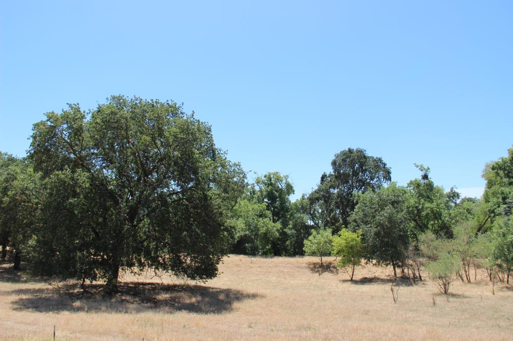 South Fork Preserve(2)