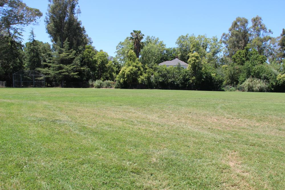 Putah Creek Park - Soccer Field(4)