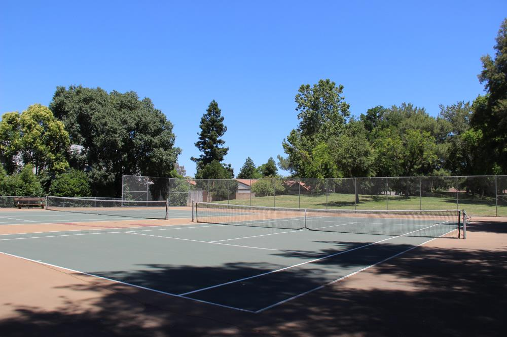 Pioneer Park - Tennis Courts(2)