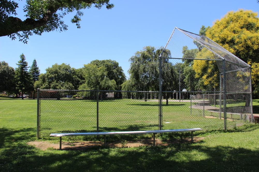 Chestnut Park - Softball Field(1)