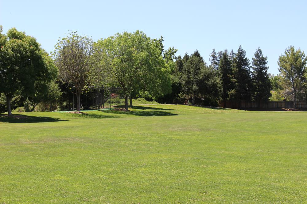 Arroyo Park - Cricket Field(2)