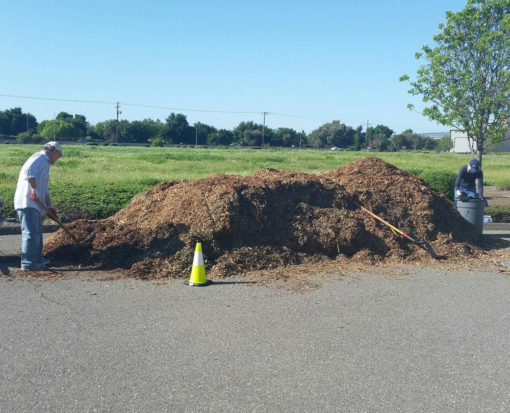 compost and mulch event 2